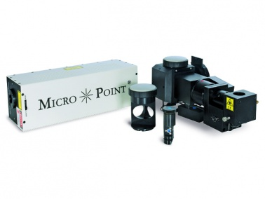 MicroPoint